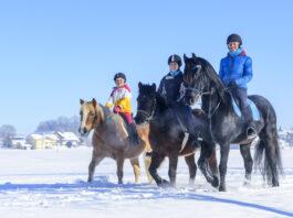 Reiten in der Gruppe im Winter