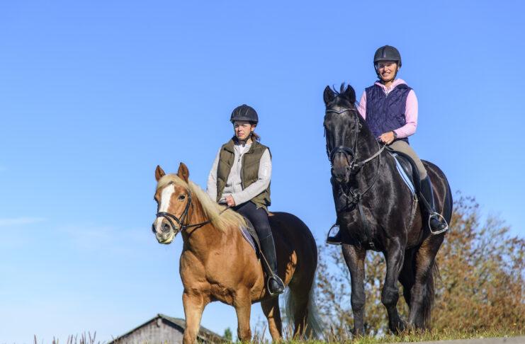 Ausritt zwei Pferde und zwei Reiterinnen
