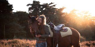 Das perfekte Pferdeshooting